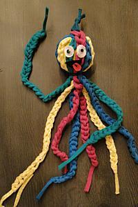 octopus